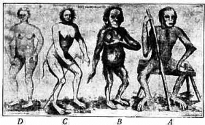 Difference archaology and anthropology