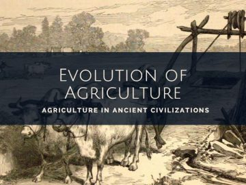 Agriculture in ancient civilizations