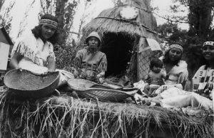 Paiute tribe